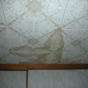 天井のしみ01